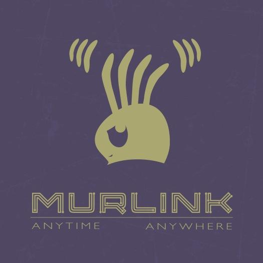 Murlink Project